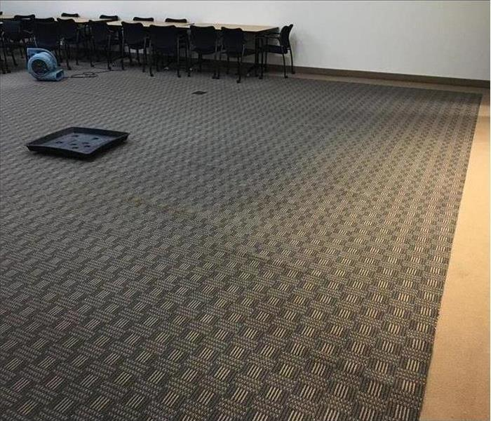 Carpet in conference office flooded with water.