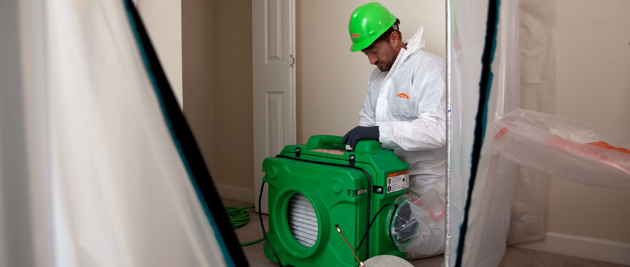 Julian, CA mold cleanup
